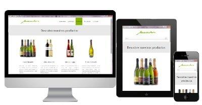 Diseño paginas web Asturias